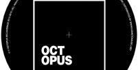 OCTWHS001 | Warehouse Series 001
